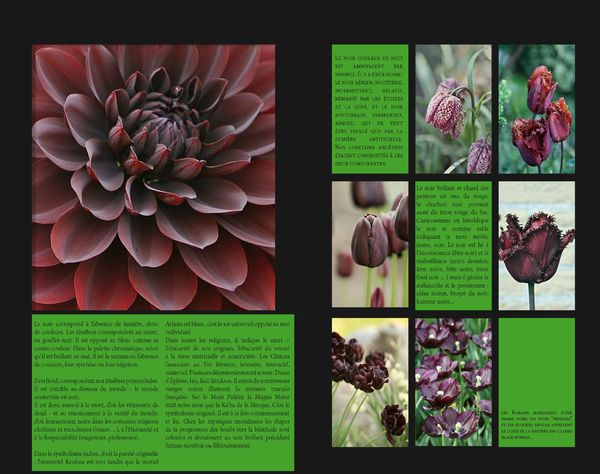 GardenColours1_Page_09