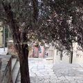 016- Aux pieds de l'Acropole