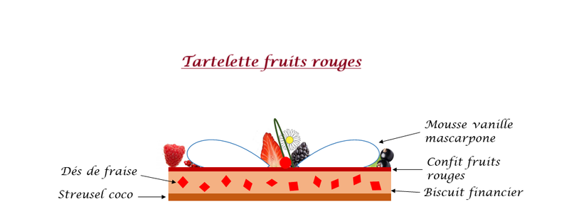 Tartelette fruits rouges croquis