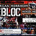 Expo morgan merrheim à la jdc galerie