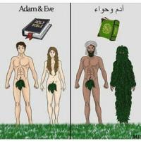 adam-et-eve-version-chretienne-et-musulmane-islam-bible-coran
