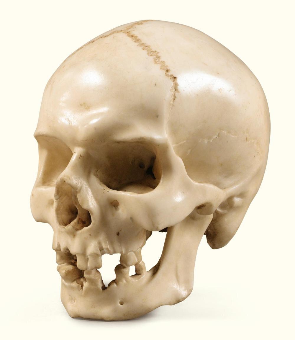 Crâne en marbre blanc, Italie, XVIIe-XVIIIe siècle