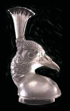 Mascotte - Tête de Paon (03.02.1928)