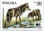 Timbre Pologne 1985 Loup 20zl