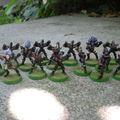 Bloody skulls : les elfes noirs débarquent