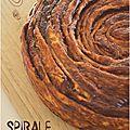 ..spirale brioche au chocolat-praliné..