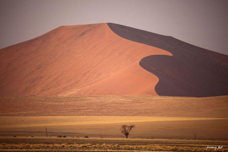 lignes du desert du namib