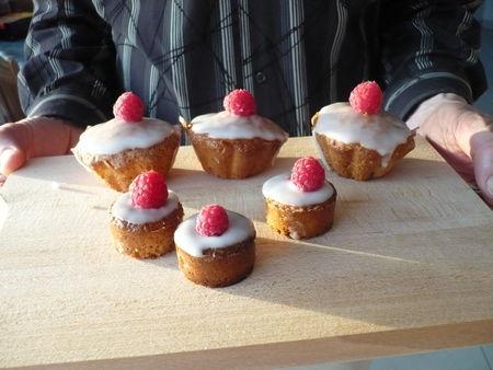cupcakes_182