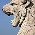 Lion, pour rugir de plaisir