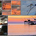 Petit coin de ciel du lundi 11 décembre: mosaïque de nos ciels