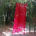 Jardin Poterie Hillen 12061651