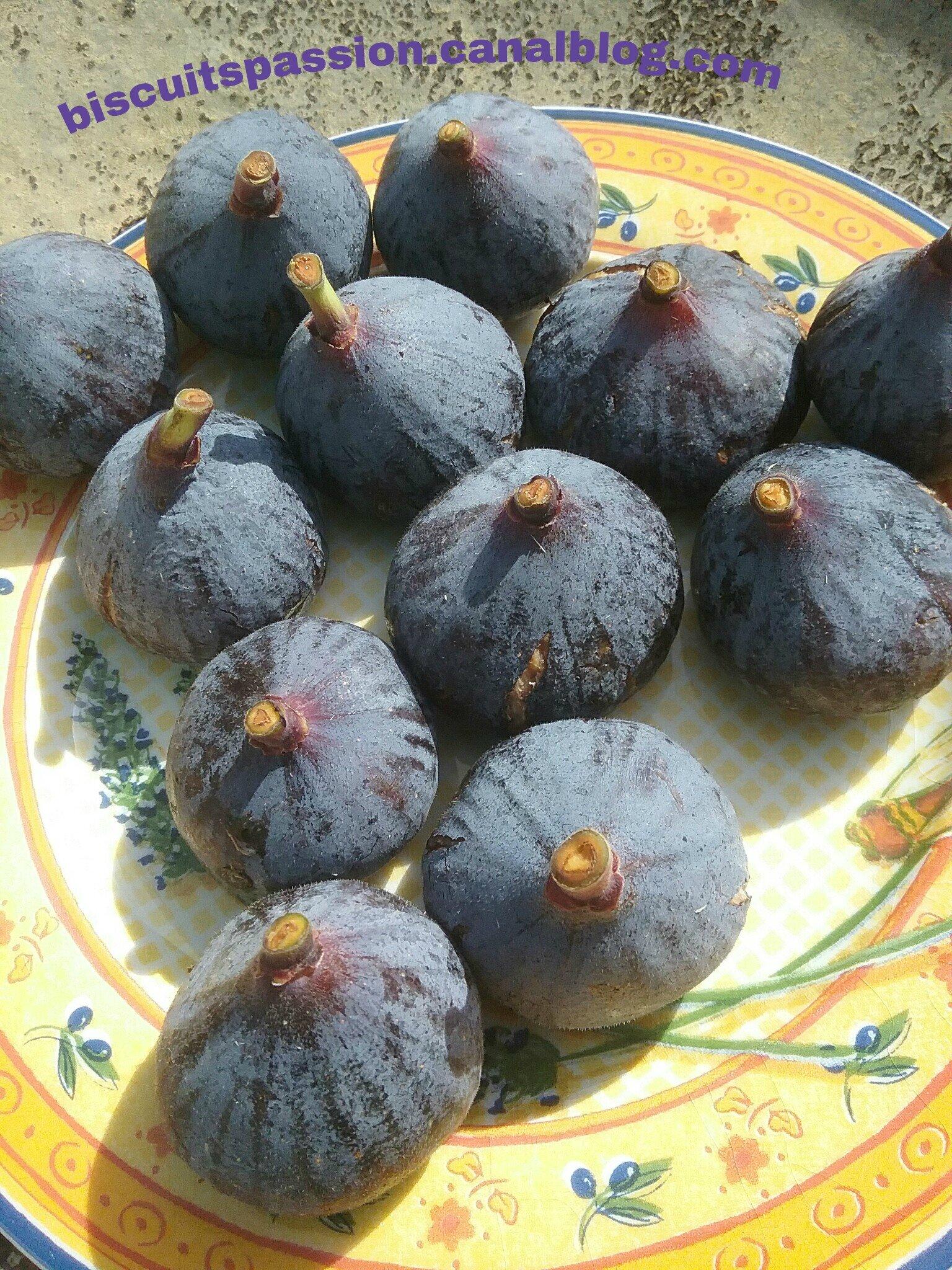 Supers moelleux aux figues fraîches 059