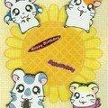 Carte Hamtaro