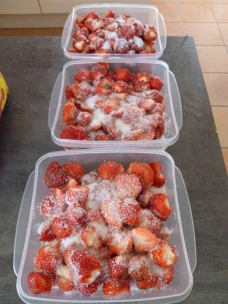 15-fraises (6)