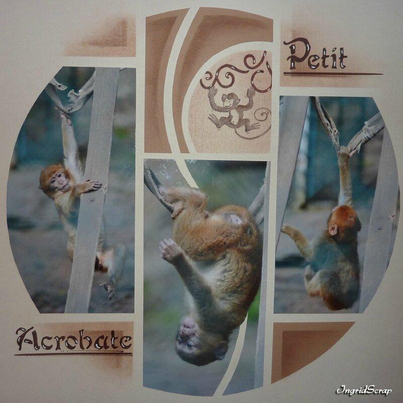 Petit Acrobate