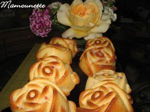 Roses___la_framboise_et___la_fraise_du_jardin_031