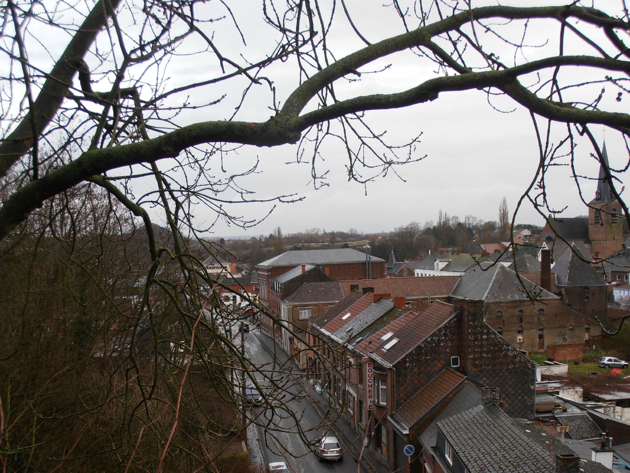 Wasmes - panorama du pont 3