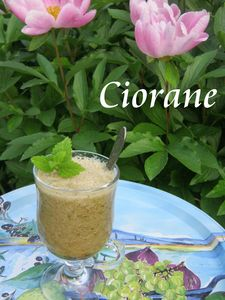 melon_concombre_soupe