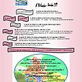 Écho des bout'choux (novembre - décembre n°98 )