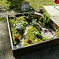 mini jardin 201311