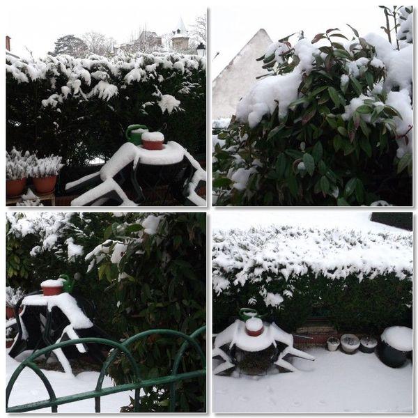 mosa_que_jardinet_sous_la_neige
