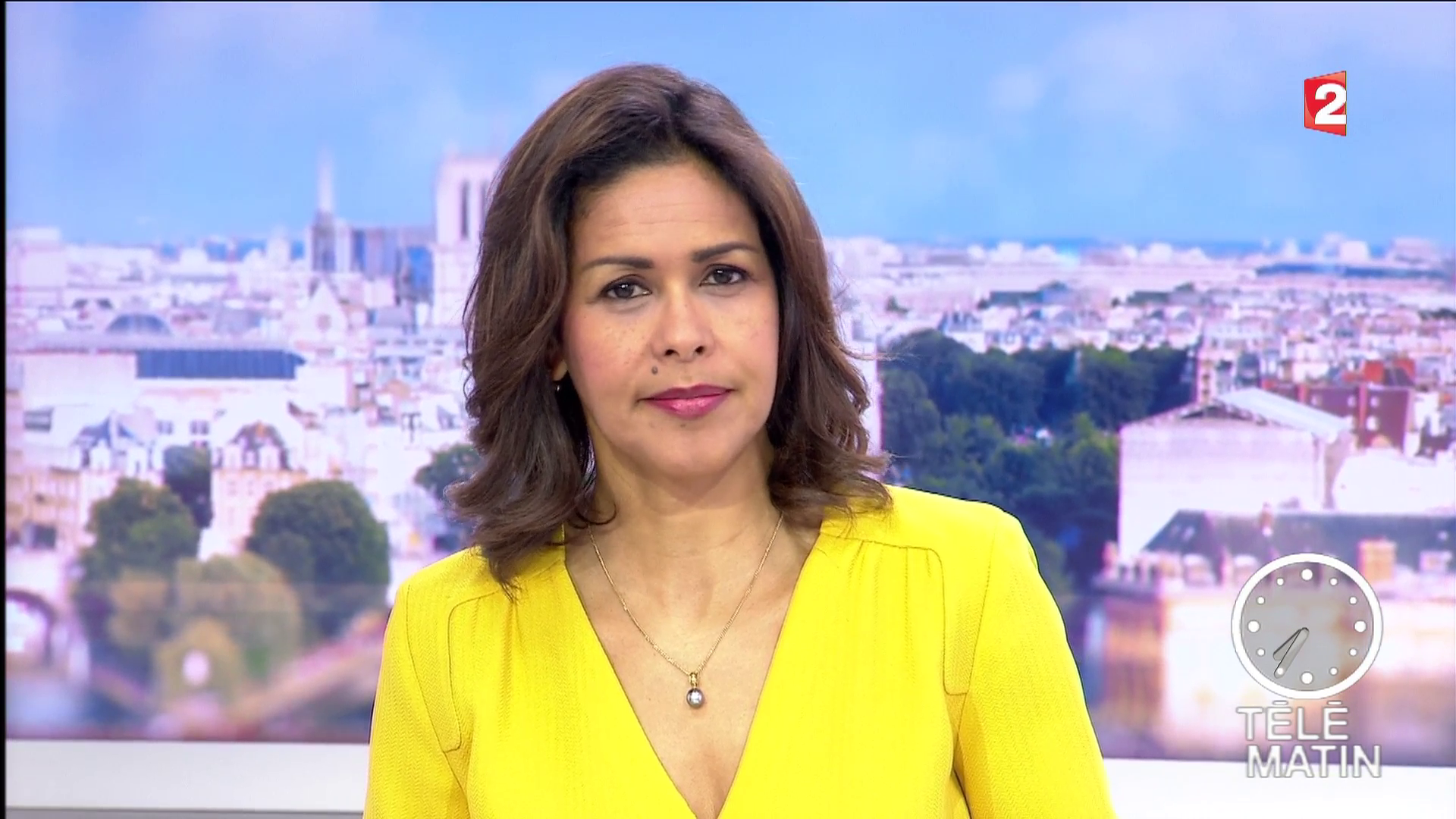 sophiegastrin03.2016_03_28_7h30telematinFRANCE2