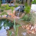 point d'eau 2009
