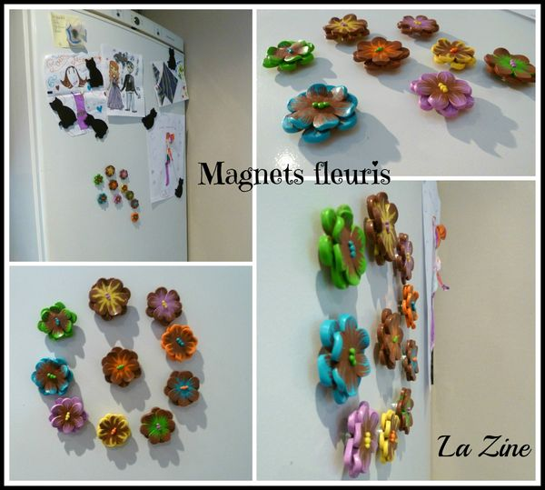 magnets Collage