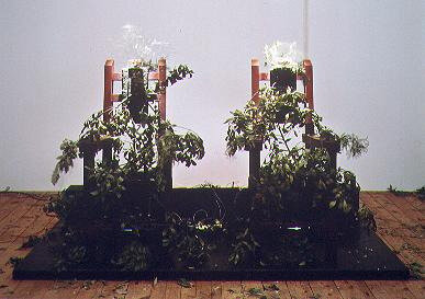 Malachi FARRELL, Nature morte (les chaises électriques) (1999-2000)