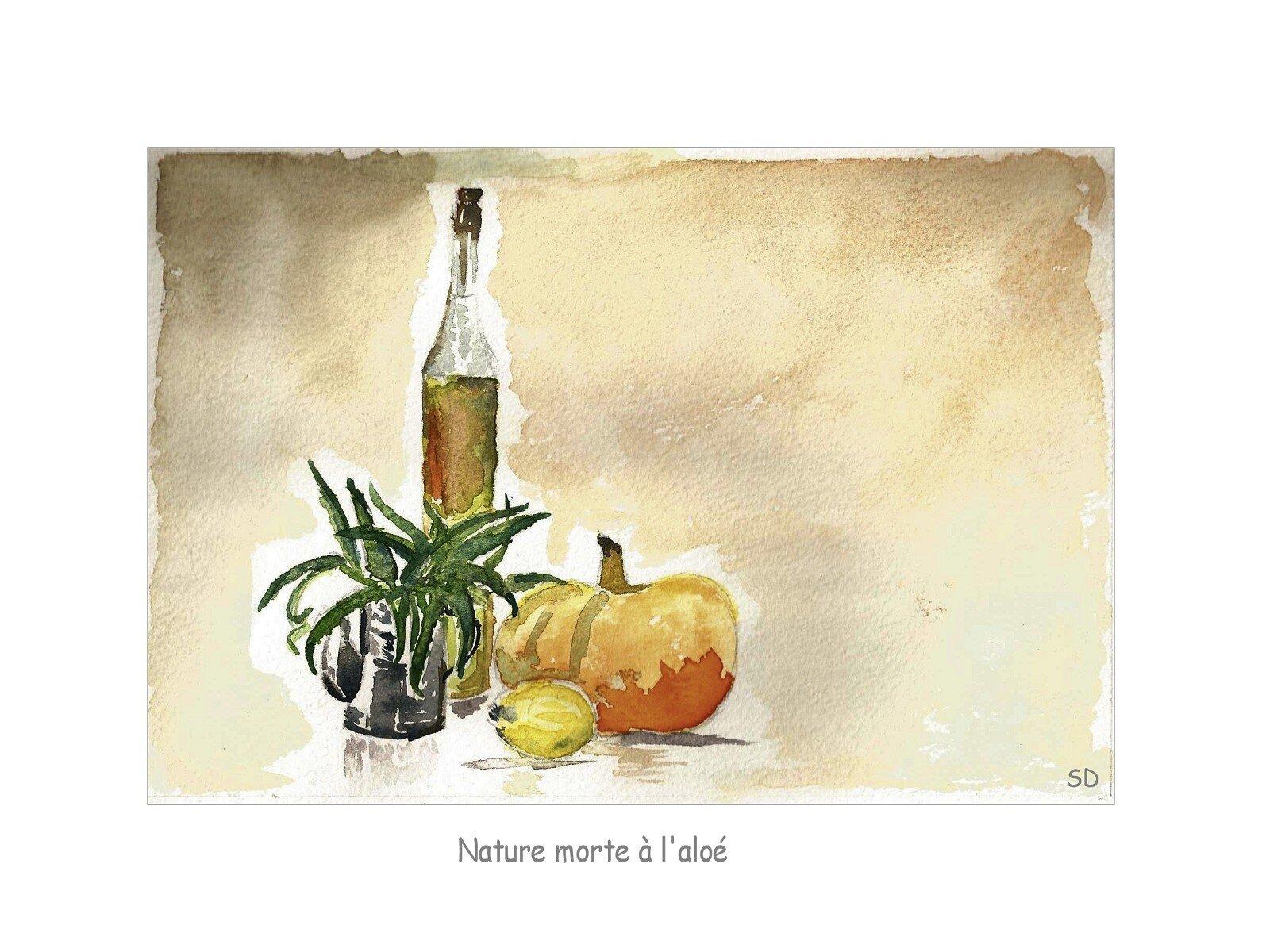 nature morte à l'Aloe