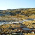 17-10-08 Sortie Montagne et rennes (054)