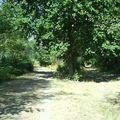 Fourche à Gabarret : à droite vers B.-B. ! à gauche vers Mont de