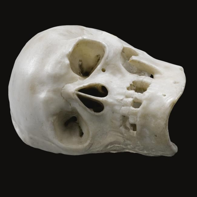 English, 17th/ early 18th century, memento mori skull. photo Sotheby's