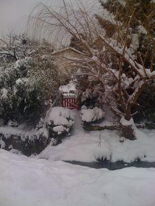 neige_016