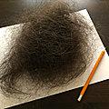 Perdre ses cheveux