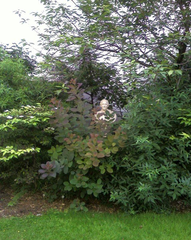 Montesquieu dans les buissons