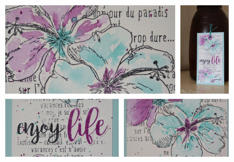 Montage hibiscus menthe cassis
