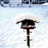 Notre jardin en hiver