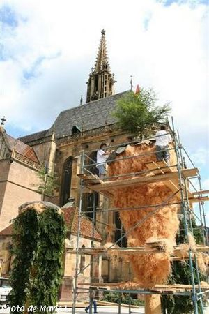 Preparation_des_sapins