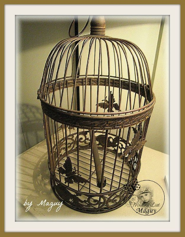 cages 1