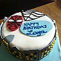 spiderma cake