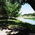 Lac de Behasque, St Palais et Etang de la Pounte 190818