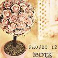 ~ projet p12-2013 ¤ février