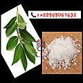 Protection avec le sel technique efficace d'un marabout féticheur célèbre du bénin