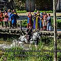 Histoire du costume et de l'ameublement au temps des gaulois et romains