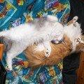 Y'a un super coussin pour la sieste ...