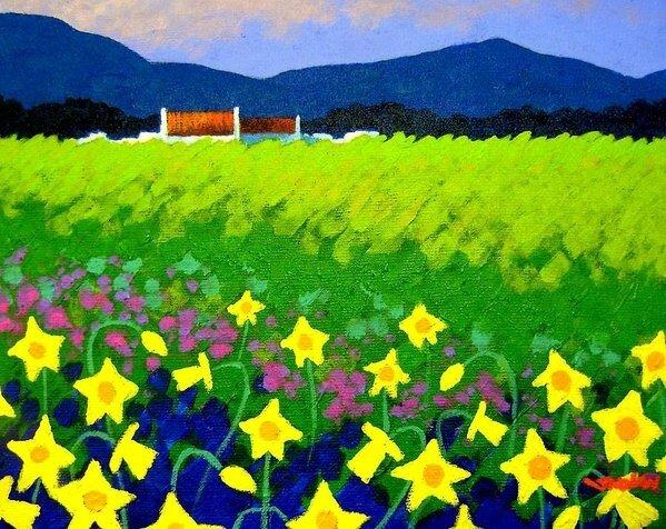spring-daffs-ireland-john-nolan