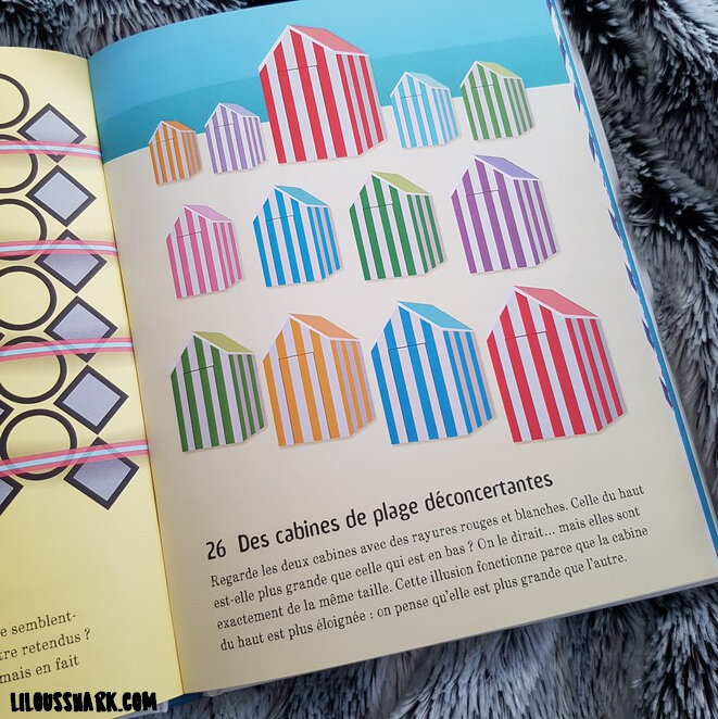 101 illusions doptique usborne lilousshark