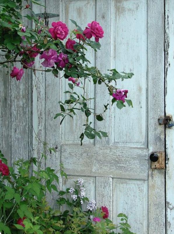 rose et gris&a&aaa