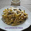 Macaroni aux courgettes